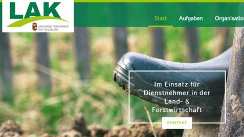 Homepage mit Suchmaschinenoptimierung